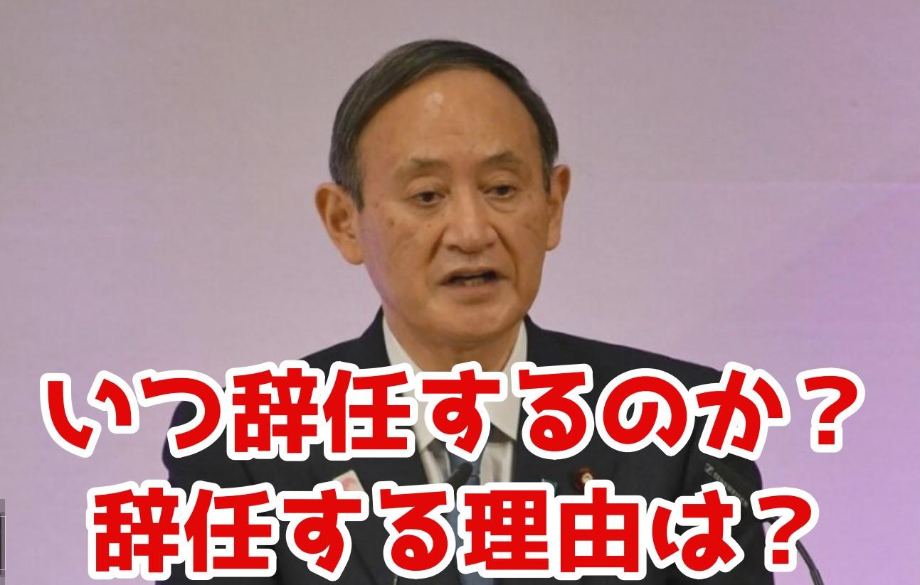 菅総理が辞任発表!いつ辞任して、辞任理由とは?